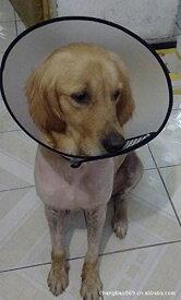 【XLL】首周り42-44cm、幅22cm 全7サイズ[sealche]犬ペット用エリザベスカラーソフトタイプ(傷口をなめて悪化させるのをやさしく防ぎます)大型犬 中型犬 小型犬 猫 ソフト ロング ドーナッツ