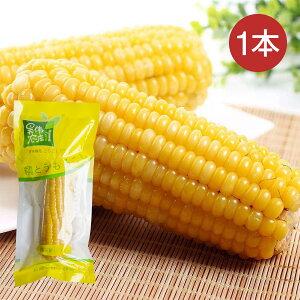 糯玉米 1本 もちもちとうもろこし 黄もちとうもろこし 糯玉米棒 黄糯玉米 調理済み 温めるだけ 真空パックコーン 中華食材 電子レンジOK【4573437460250】