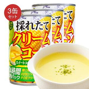 クリームコーン 缶詰 425g×3缶セット クリームスタイル スープ シチュー パスタ等にご利用 スイートコーン 缶 コーンクリームスタイル缶詰【4580203192475】