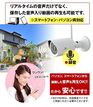無線WiFiワイヤレス対応243万画素高画質防水防塵防犯カメラスマホ