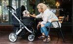 ピッコロカーネ対面式ペットカートTANTO【耐荷重30kg】【送料無料】※色はブラックです!