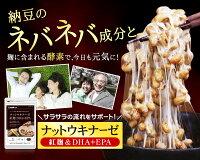 紅麹入りナットウキナーゼDHA&EPA約12ヵ月分【seedcoms_D】12D