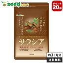 【AF-20】サラシア 約3ヵ月分 送料無料 サプリメント ダイエット 美容 サラシア末 菊芋エキス末