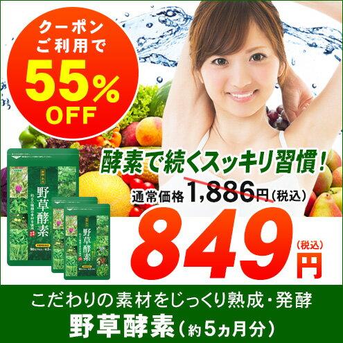 【クーポンで55%OFF】野草酵素 約5ヵ月分