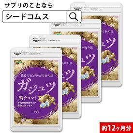 ガジュツ 約12ヵ月分【seedcoms_D】12D