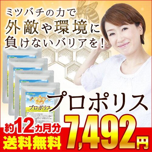 プロポリス 約12ヵ月分 【seedcoms_D】12D【s20】【diet_D1809】