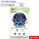 ブルーベリー 約1か月分 サプリ サプリメント ブルーベリー ビルベリー メグスリノキ アイブライト ビタミン ポリフェ…