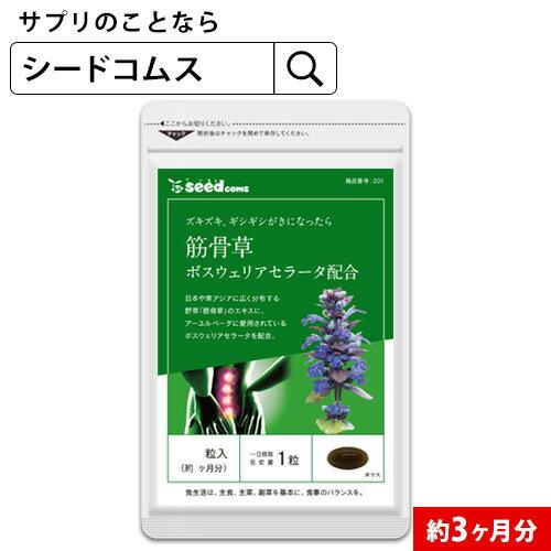 筋骨草+ボスウェリアセラータ 約3ヵ月分 【seedcoms_D】3D