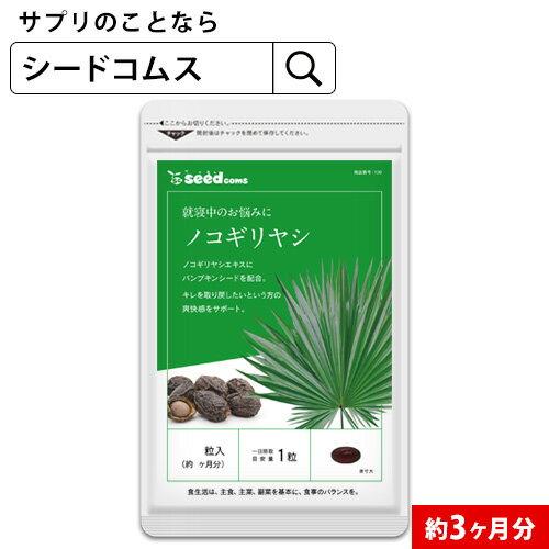 ノコギリヤシ 約3ヵ月分 【seedcoms_D】3D