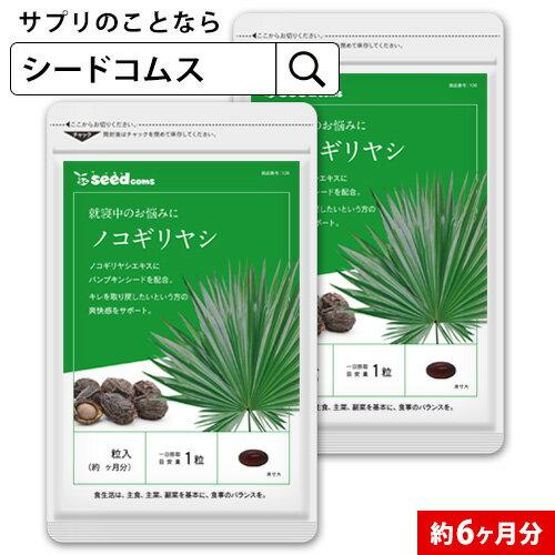 ノコギリヤシ 約6ヵ月分 【seedcoms_D】6D
