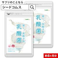 \【☆新商品☆】/〓有胞子性乳酸菌ソフトカプセル〓