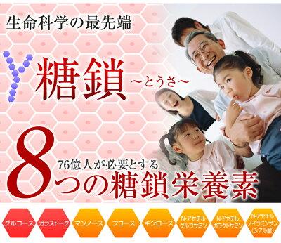 【ポイント10倍】【20%OFF】糖鎖【送料無料】【ツバメの巣】2箱セット