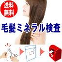 送料無料 毛髪ミネラル検査キット ら・べるびぃ予防医学研究所  26元素のミネラルを計測 毛髪を送るだけの簡単検査…