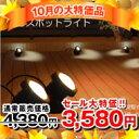 【10月の大特価品】ソーラー式 スポットライト  2灯セット 送料無料