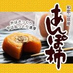 紀州和歌山産あんぽ柿70g×10個【柿/かき/わかやま】【送料無料】
