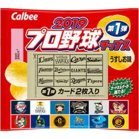 カルビー 2019プロ野球チップス 22g×24個×2セット
