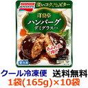 【送料無料】味の素 洋食亭 ハンバーグ デミグラス 袋165g×12袋(1ケース) 【冷凍】
