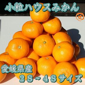 【バラ詰】小粒ハウスみかん 約5kg 送料無料(一部地域を除く) みかん ミカン 蜜柑 果物 フルーツ