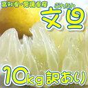 【訳あり】/文旦 約10kg/ 【送料無料】 L〜Sサイズ