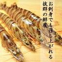 ★聖なる海老1kg(31〜40尾入り)お刺身用