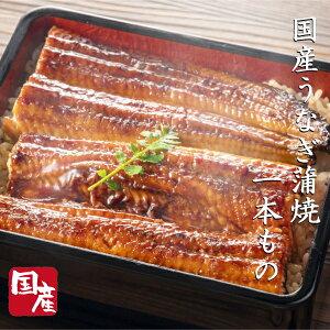 国産うなぎ蒲焼(有頭)1尾約160g 蒲焼たれ&山椒付き