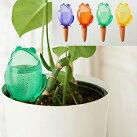 【シューリッヒフロッギー】水やり植物自動給水器ガーデニング