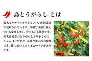 請福島とうがらし(コーレーグース)請福の泡盛と純米酢で造りました辛味調味料/唐辛子/コーレーグス/八重山そば/沖縄そば【RCP】