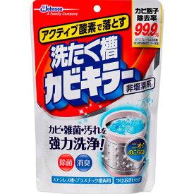 アクティブ酸素で落とす 洗たく槽カビキラー250g【3980円以上送料無料】