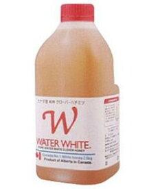 【クインビーガーデン】ウォーターホワイト 2.5kg×6