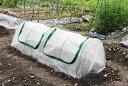 防虫ネット 菜園用らくらく防虫ネット 2M 作業窓2カ所(トンネル用防虫ネット 白色)