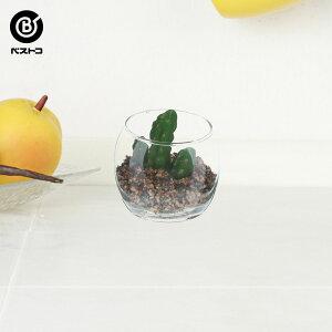フェイク テラリウムグリーン グラス丸M 1 | 観葉植物 壁掛け 壁かけ フェイク ミニ 人工観葉植物 造花 多肉植物 ガラス ガラス鉢 小さい インテリアグリーン おしゃれ プレゼント ギフト コ
