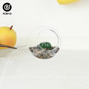 フェイク テラリウムグリーン グラス横 1 | 観葉植物 壁掛け 壁かけ フェイク ミニ 人工観葉植物 造花 多肉植物 ガラス ガラス鉢 小さい インテリアグリーン おしゃれ プレゼント ギフト コン