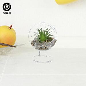 フェイク テラリウムグリーン グラス横ステム 3 | 観葉植物 壁掛け 壁かけ フェイク ミニ 人工観葉植物 造花 多肉植物 ガラス ガラス鉢 小さい インテリアグリーン おしゃれ プレゼント ギフ