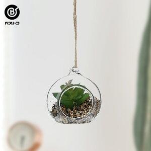 フェイク テラリウムグリーン ハンギング丸S 3 | 観葉植物 壁掛け 壁かけ フェイク ミニ 人工観葉植物 造花 多肉植物 ガラス ガラス鉢 小さい インテリアグリーン おしゃれ プレゼント ギフト