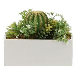EVAポット アート プロプル スクエア 1 | 観葉植物 壁掛け 壁かけ フェイク ミニ 人工観葉植物 造花 多肉植物 ガラス鉢 小さい インテリアグリーン おしゃれ プレゼント ギフト コンパクト セ