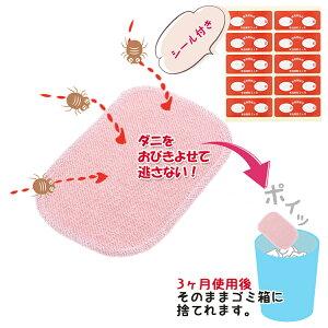 【サン企画】ダニ取りシート【メール便送料無料】