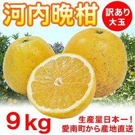 河内晩柑 訳あり大玉9kg 3L以上【愛媛県愛南町産】送料無料