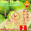 【送料無料】訳ありレモン 2kg 愛媛県産【ノーワックス】