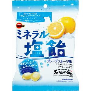 ミネラル塩飴 100g×40袋入り (1ケース) (MS)
