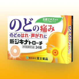 のど 痛み【指定医薬部外品】 新ジキナトローチ (24錠)