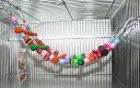 レインボー レインボーバードトイ カラフルラダー (鳥、はしご、おもちゃ)