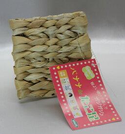 KAWAI 川井バナナdeたこ足