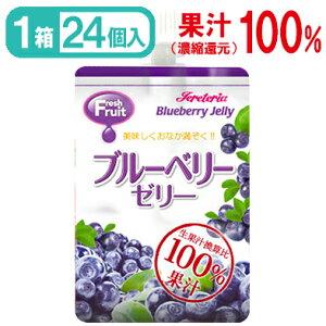 【国内製造】ゼリー飲料フレッシュフルーツ180gブルーベリーゼリー 24袋入