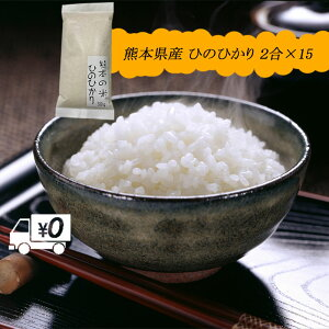 送料無料 熊本のおいしいお米 ひのひかり 300g×15 合計4.5kg 令和元年 熊本県産100%