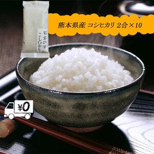 令和2年新米 送料無料 熊本のおいしいお米 コシヒカリ 300g×10 合計3kg 熊本県産100%