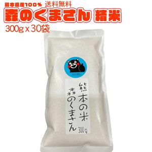 送料無料 熊本のおいしいお米 森のくまさん 300g×30 合計9kg 令和2年新米 熊本県産100%