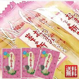 岩下の 新生姜 47g×3袋 メール便 新ショウガ 新しょうが 送料無料