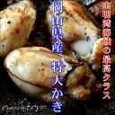 岡山県産 特大かき 超希少3L 1Kg (解凍後800g/25粒前後) カキ 牡蠣 冷凍 かき 無添加食品 高級 ギフト お取り寄せ おつまみ 2個〜 送料無料 ※冷凍保存2ヶ月以上