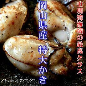 岡山県産 特大かき 超希少3L 1Kg (解凍後800g/25粒前後) カキ 牡蠣 かき 無添加食品 高級 ギフト お取り寄せ おつまみ 2個〜 送料無料 ※冷凍保存2ヶ月以上