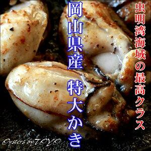 岡山県産 特大かき 超希少3L 1Kg (解凍後800g/25粒前後) 牡蠣 むき身 牡蠣 冷凍 カキ かき 無添加食品 高級 ギフト お取り寄せ おつまみ 2個〜 送料無料 ※冷凍保存2ヶ月以上
